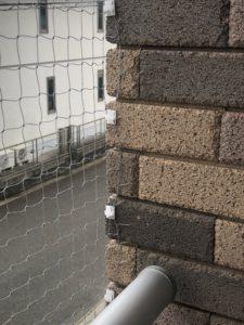 【鳥獣対策で貼っていただいた網】