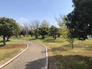 【公園内にある遊歩道】