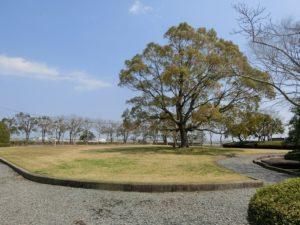 【大きなシンボルツリーのある広域衛生センター公園】