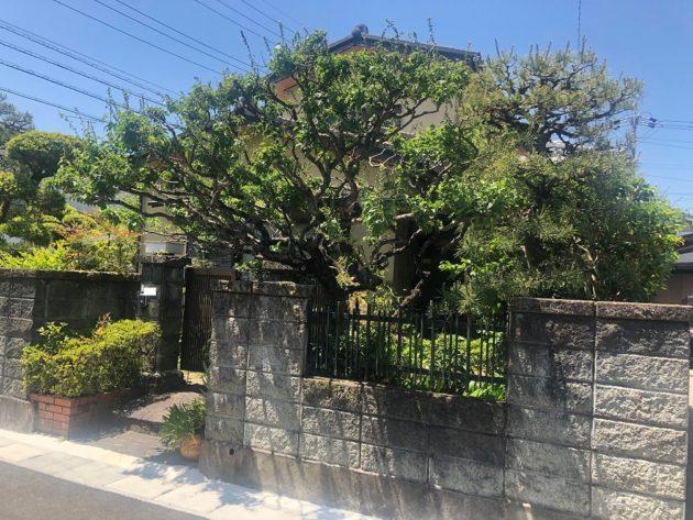 【玄関周りは木々に囲まれて癒されます】