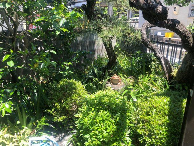 【玄関前の庭ではカエルの置物がお出迎え】