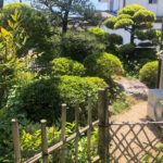 【門扉横にある趣のある庭】