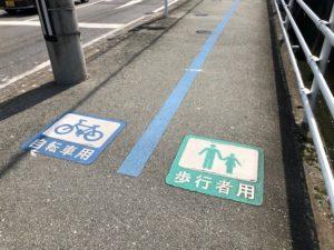 【混雑時には分かれる自転車用ラインと歩行者用ライン】